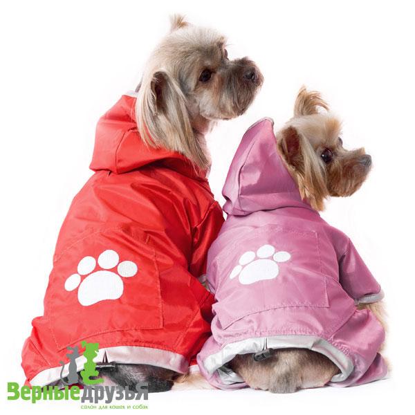Сапоги для собак купить Цены на сапожки для собак